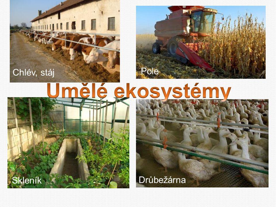 Chlév, stáj Pole Umělé ekosystémy Skleník Drůbežárna