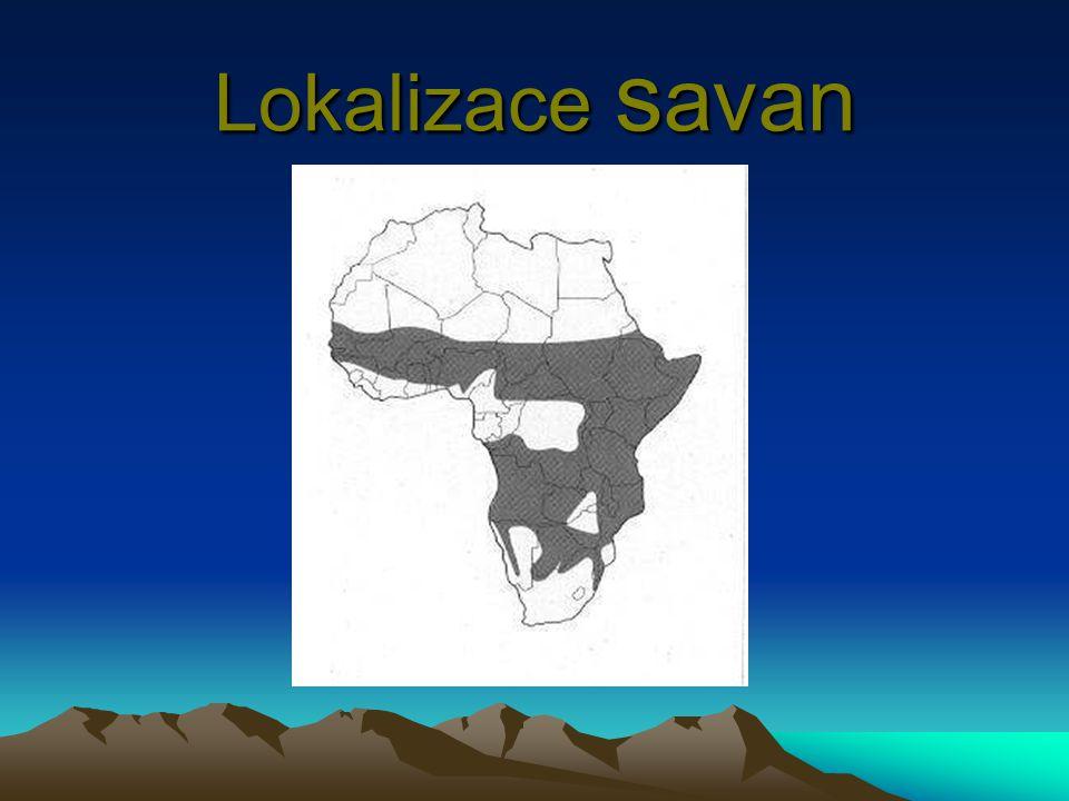 Lokalizace savan