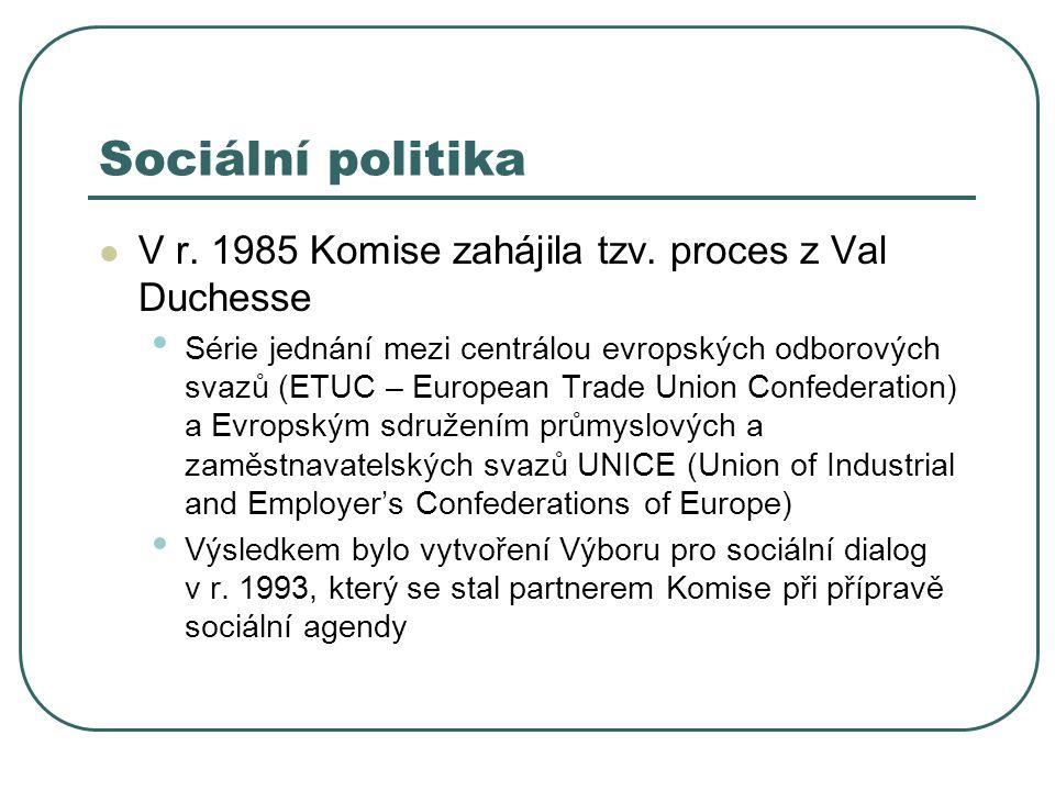 Sociální politika V r. 1985 Komise zahájila tzv. proces z Val Duchesse