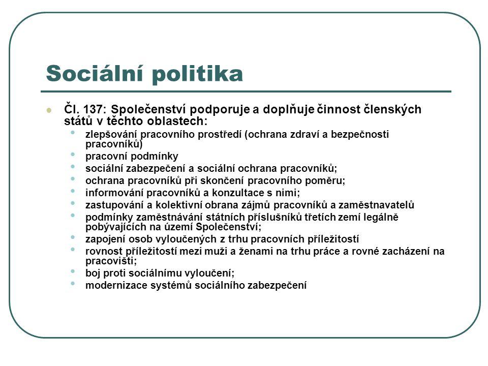Sociální politika Čl. 137: Společenství podporuje a doplňuje činnost členských států v těchto oblastech: