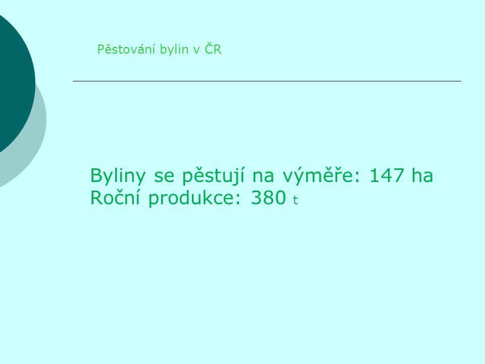 Byliny se pěstují na výměře: 147 ha Roční produkce: 380 t