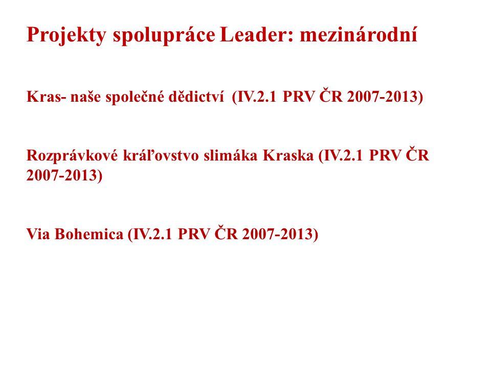Projekty spolupráce Leader: mezinárodní
