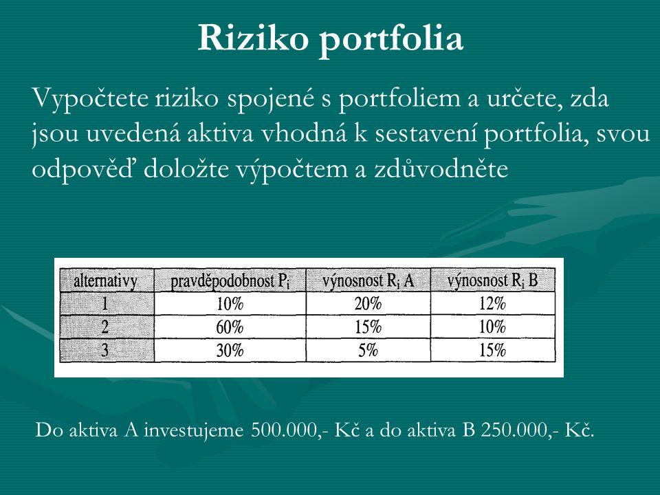 Riziko portfolia