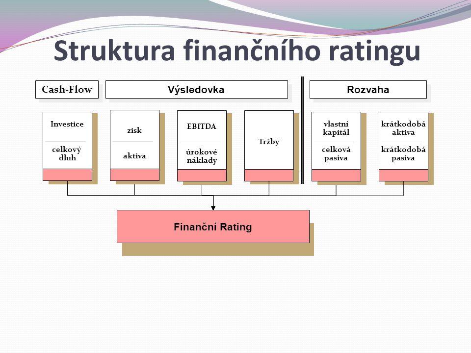 Struktura finančního ratingu