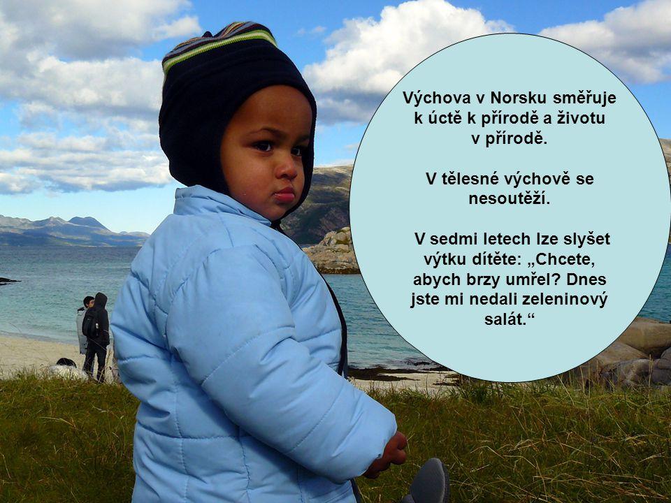 Výchova v Norsku směřuje k úctě k přírodě a životu v přírodě.