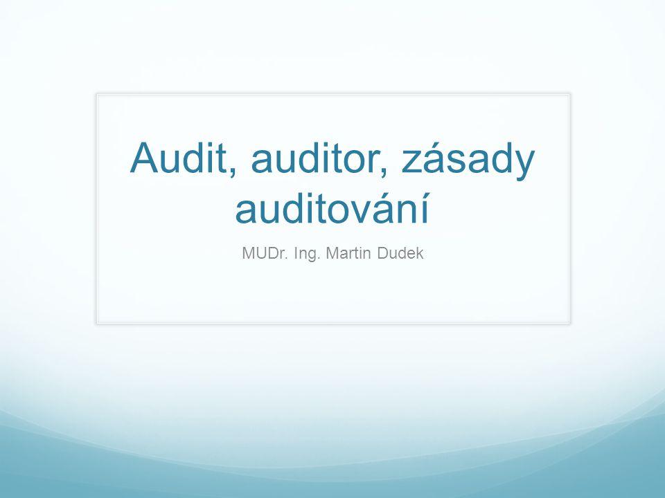Audit, auditor, zásady auditování