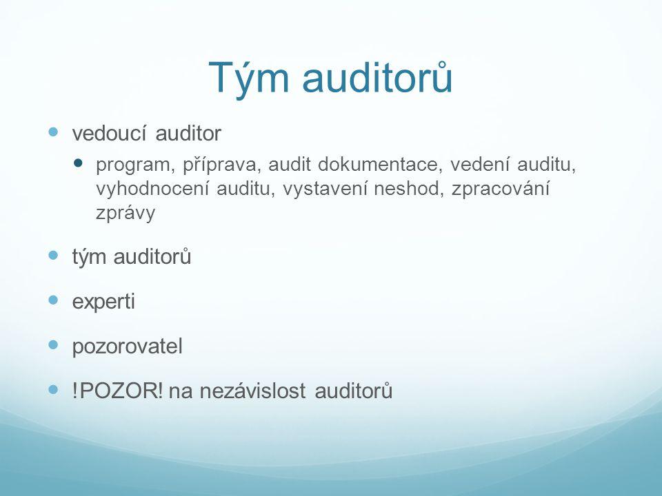 Tým auditorů vedoucí auditor tým auditorů experti pozorovatel