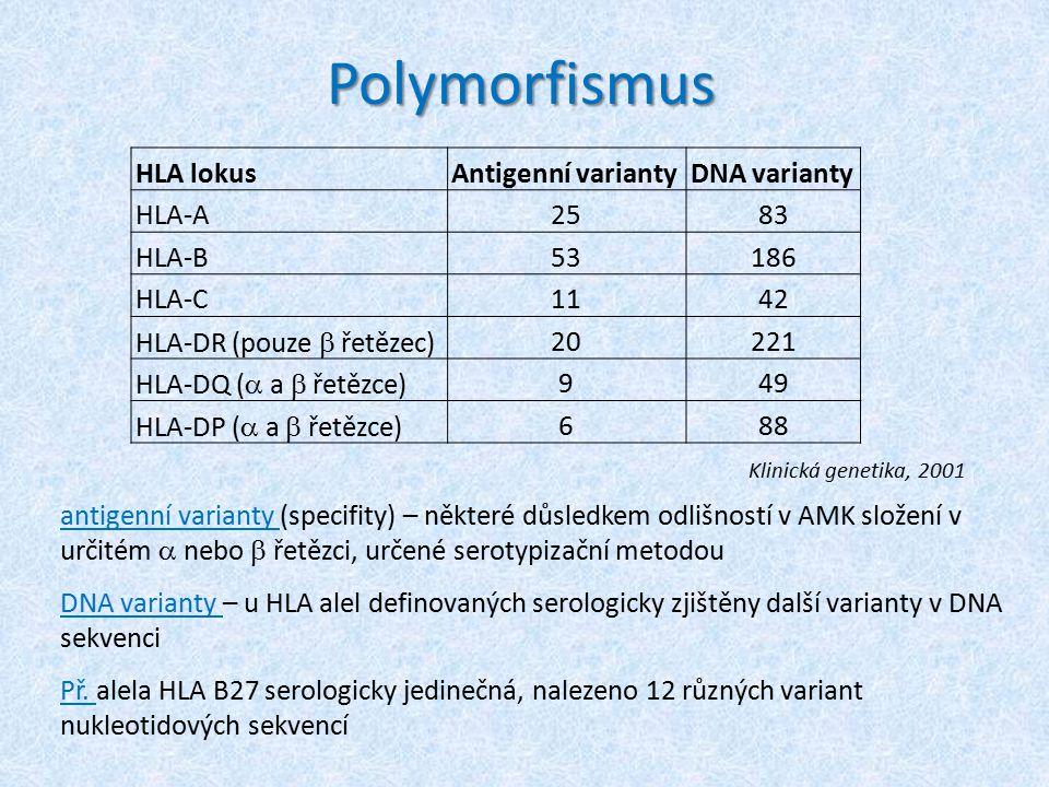 Polymorfismus HLA lokus Antigenní varianty DNA varianty HLA-A 25 83