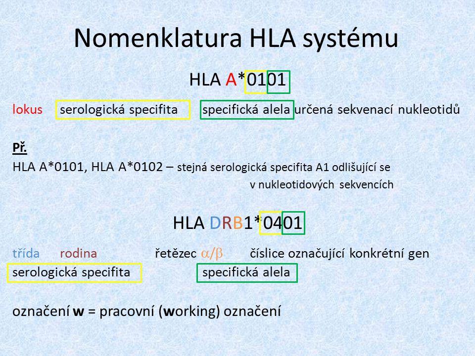 Nomenklatura HLA systému