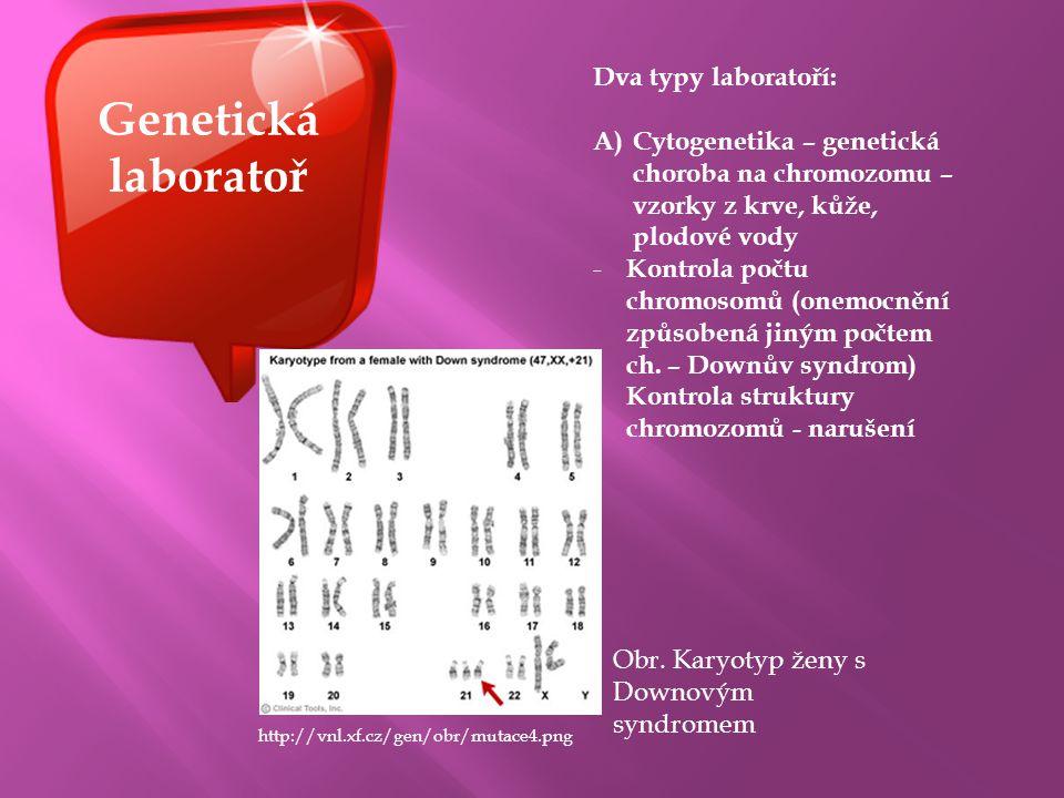 Genetická laboratoř Dva typy laboratoří: