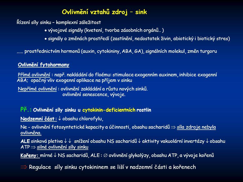  Regulace síly sinku cytokininem se liší v nadzemní části a kořenech