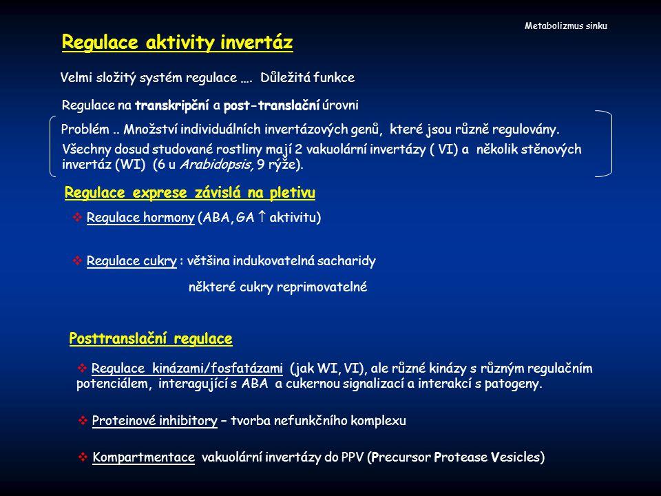 Regulace aktivity invertáz