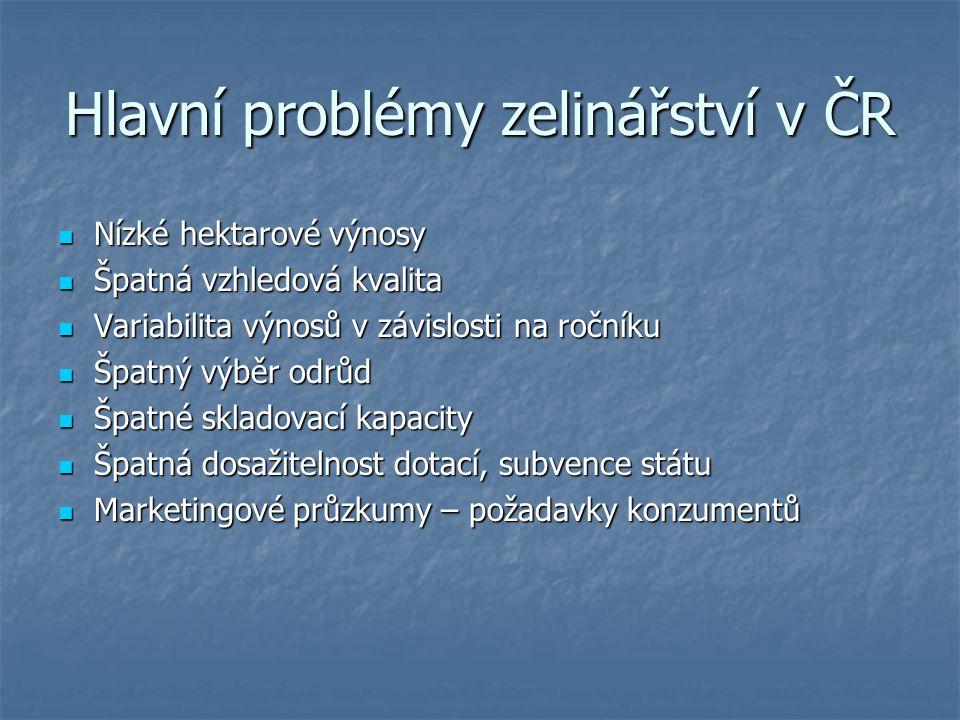 Hlavní problémy zelinářství v ČR
