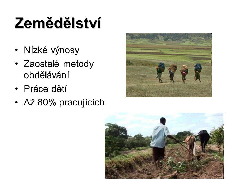 Zemědělství Nízké výnosy Zaostalé metody obdělávání Práce dětí