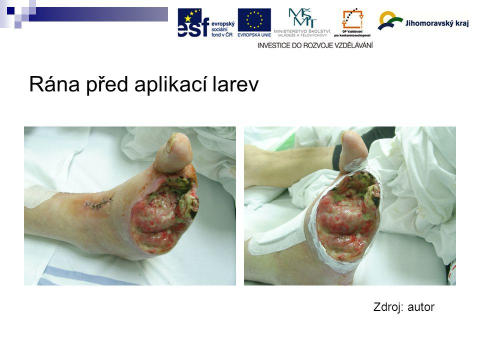 Rána před aplikací larev