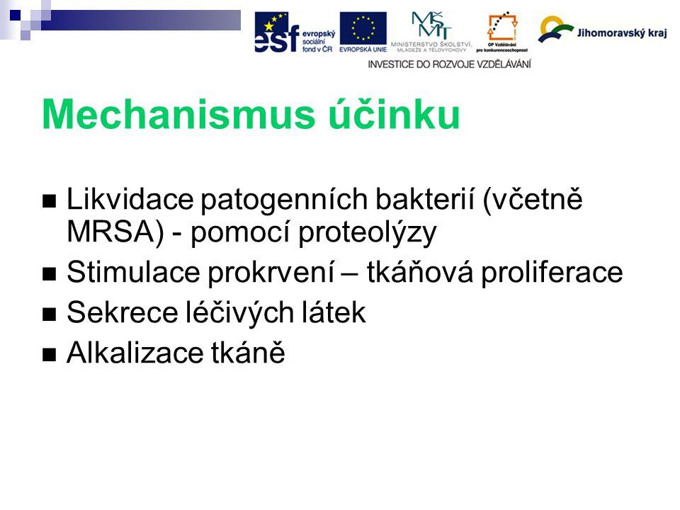 Mechanismus účinku Likvidace patogenních bakterií (včetně MRSA) - pomocí proteolýzy. Stimulace prokrvení – tkáňová proliferace.