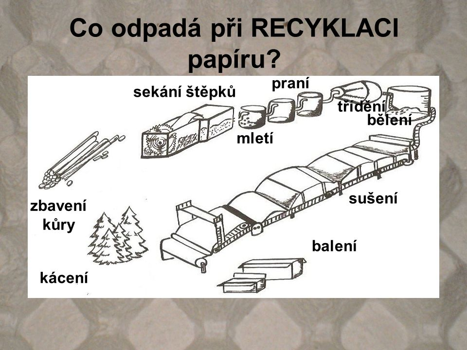Co odpadá při RECYKLACI papíru