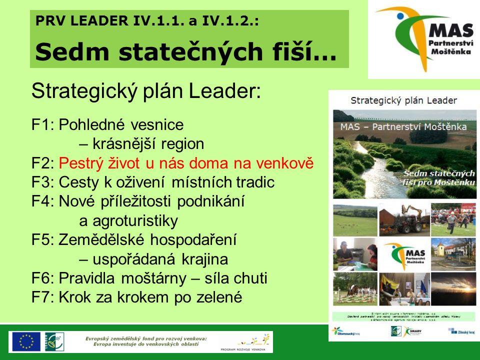 Sedm statečných fiší… Strategický plán Leader: