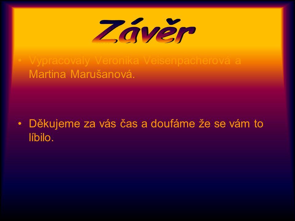 Závěr Vypracovaly Veronika Veisenpacherová a Martina Marušanová.