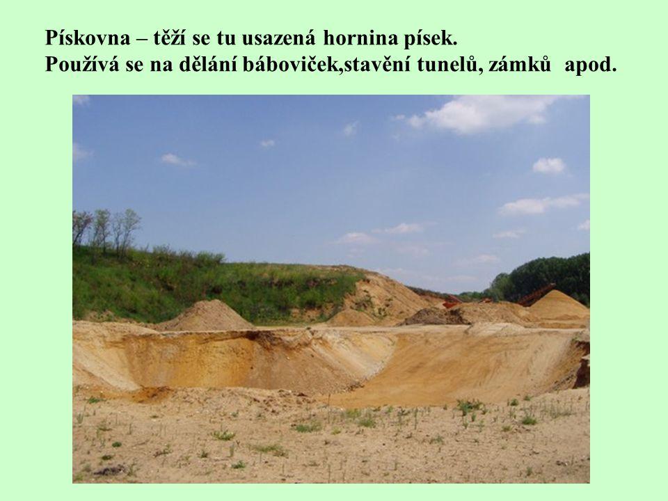 Pískovna – těží se tu usazená hornina písek.