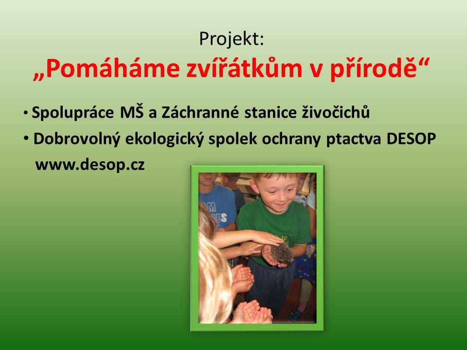 """Projekt: """"Pomáháme zvířátkům v přírodě"""