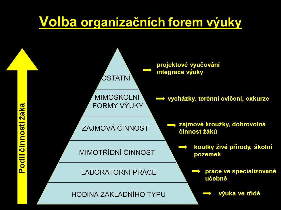 Volba organizačních forem výuky