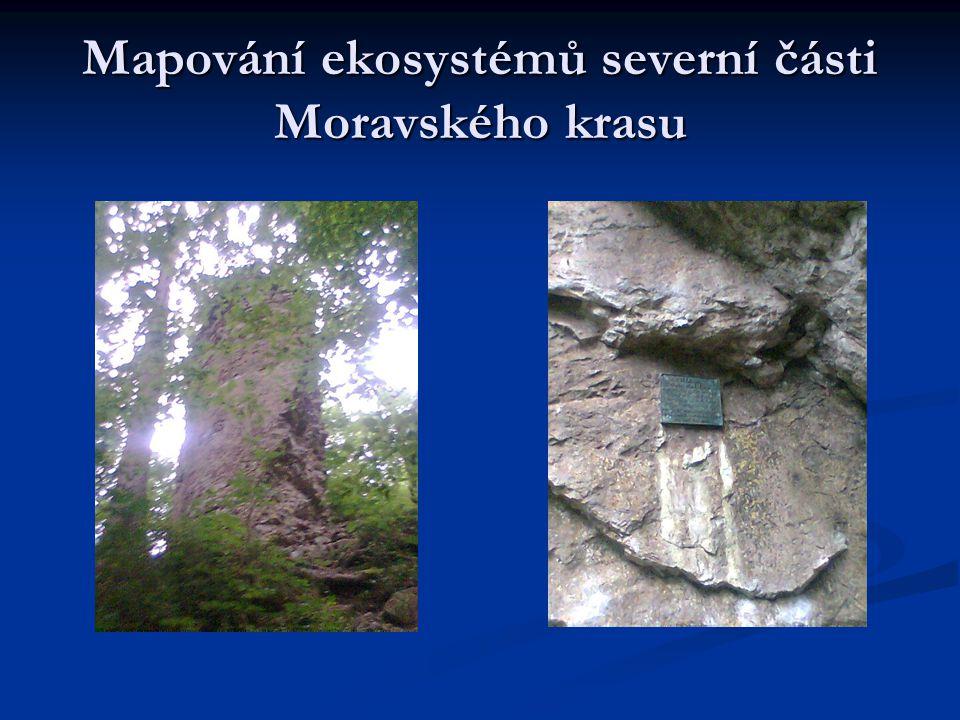 Mapování ekosystémů severní části Moravského krasu