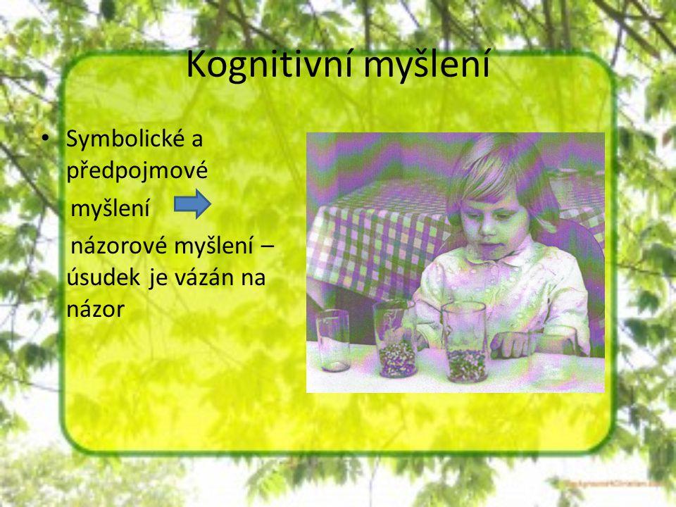 Kognitivní myšlení Symbolické a předpojmové myšlení
