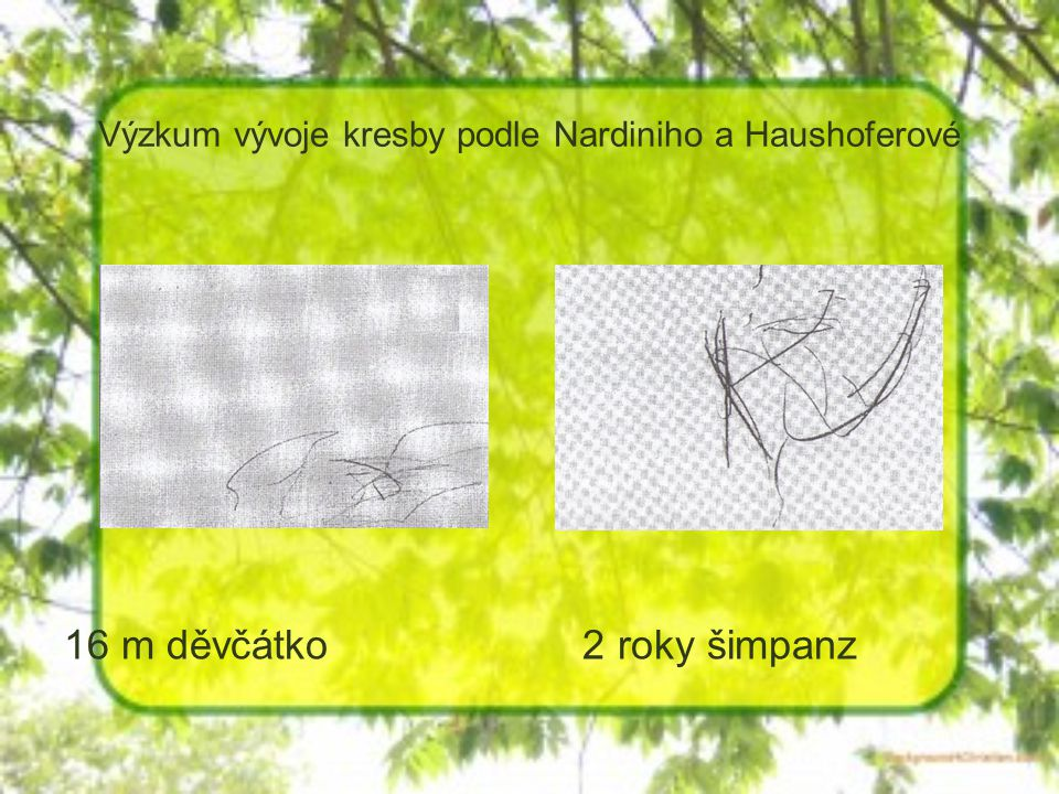 Výzkum vývoje kresby podle Nardiniho a Haushoferové