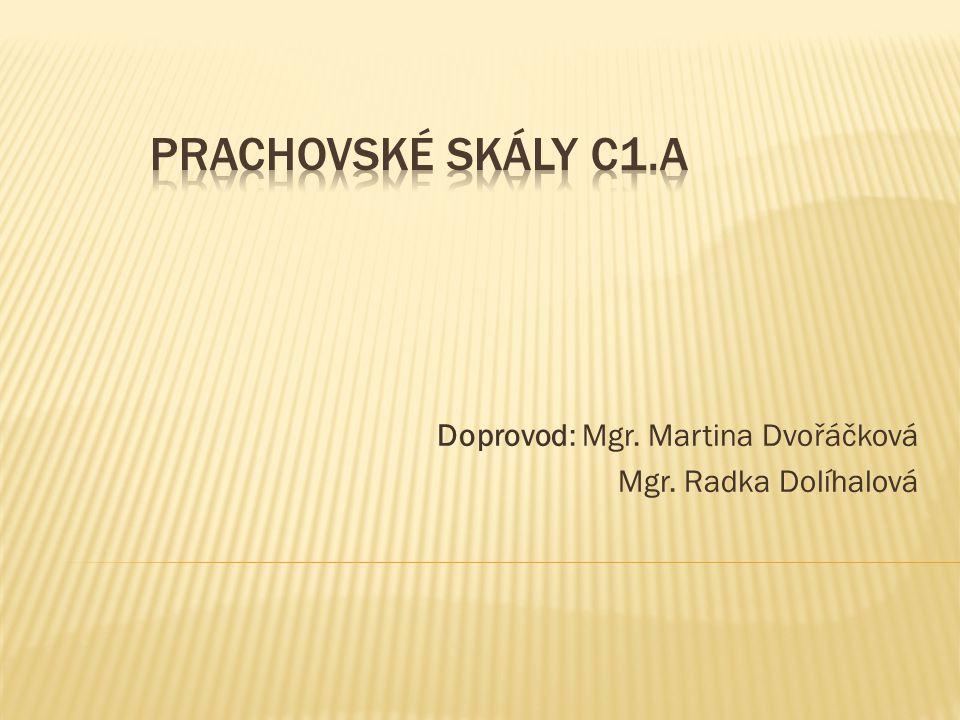 Doprovod: Mgr. Martina Dvořáčková Mgr. Radka Dolíhalová