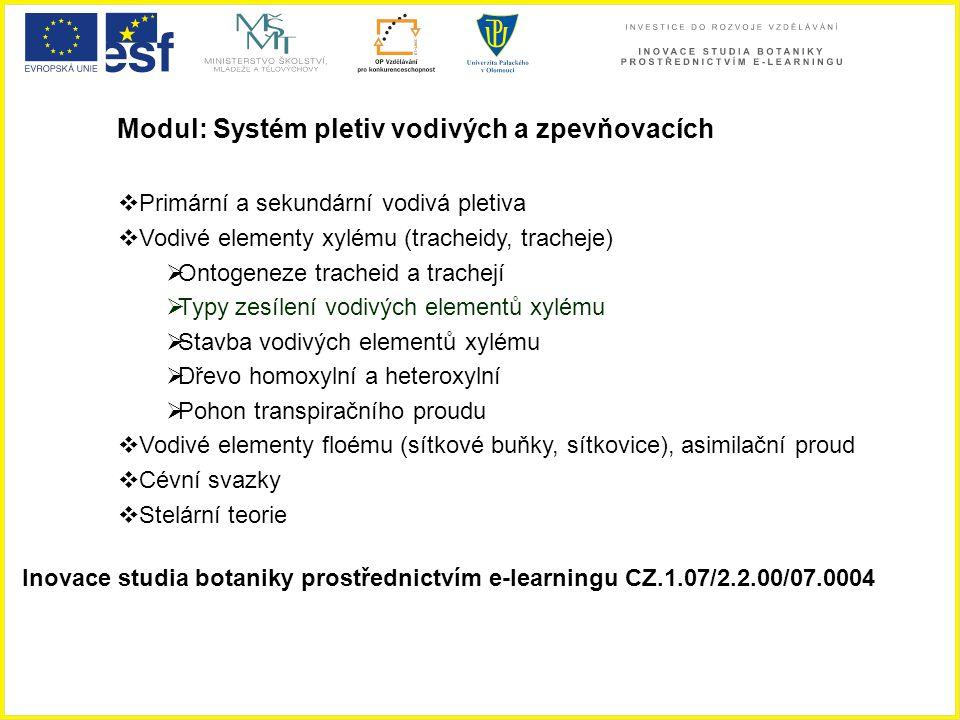 Modul: Systém pletiv vodivých a zpevňovacích