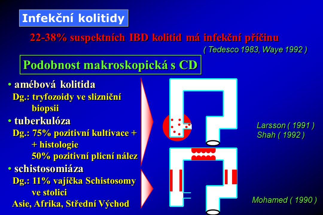 Podobnost makroskopická s CD