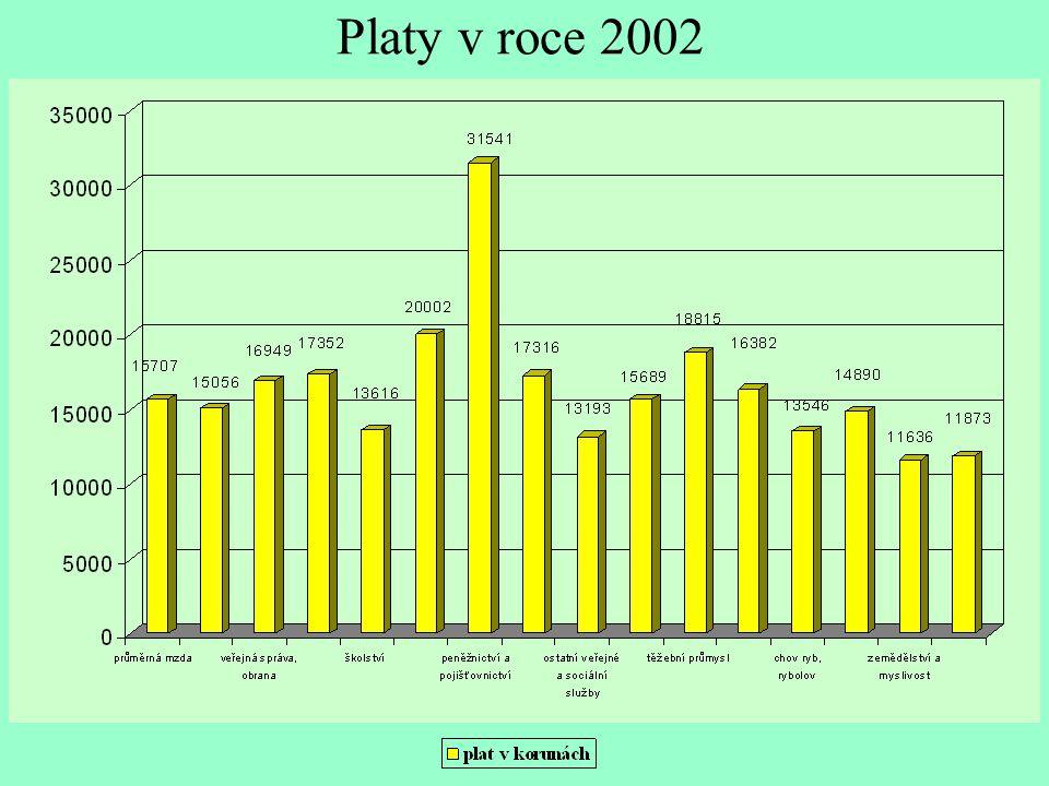 Platy v roce 2002
