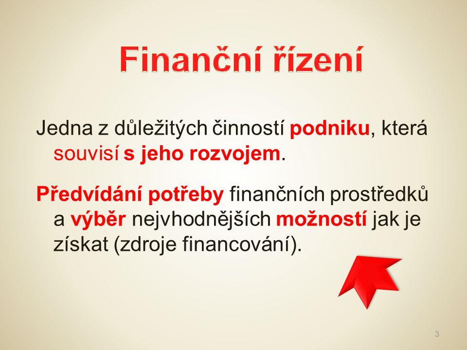 Finanční řízení Jedna z důležitých činností podniku, která souvisí s jeho rozvojem.