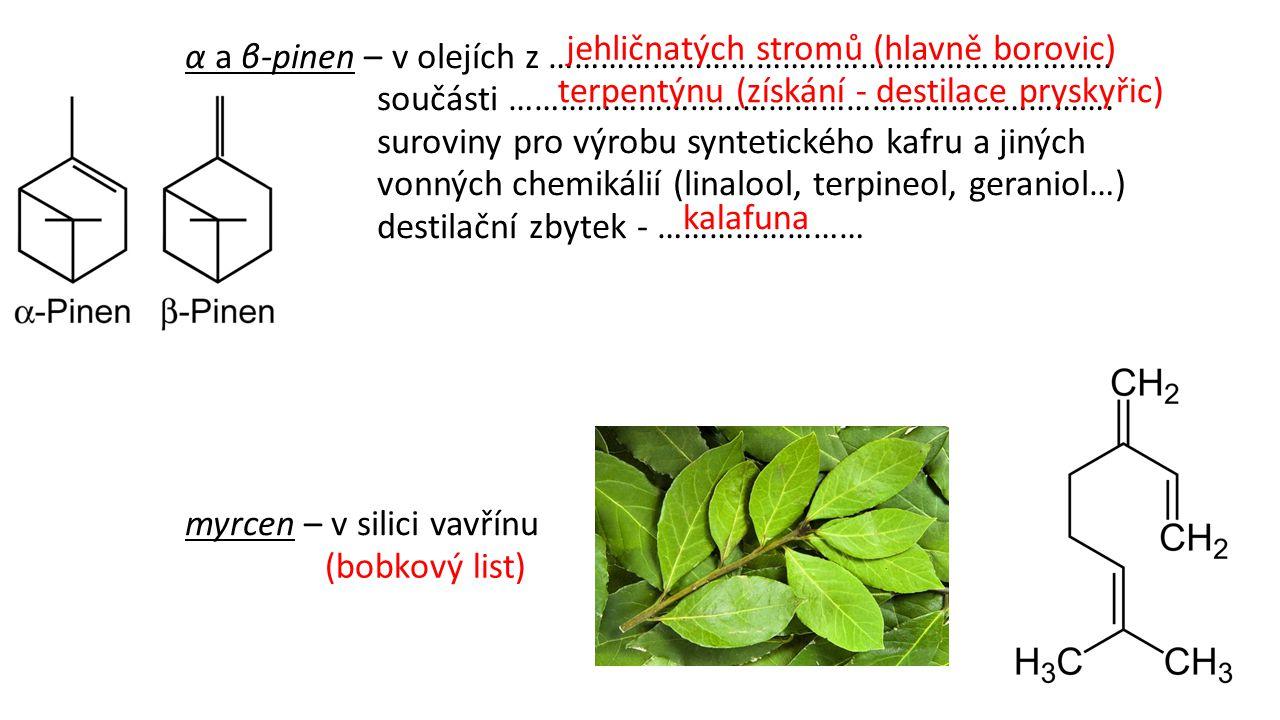 jehličnatých stromů (hlavně borovic)