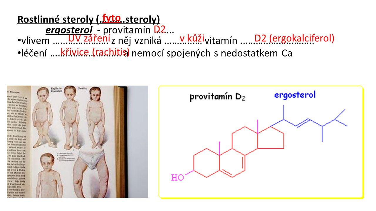 fyto Rostlinné steroly (……….steroly) ergosterol - provitamín …….. vlivem …………………. z něj vzniká …………… vitamín ………………………..