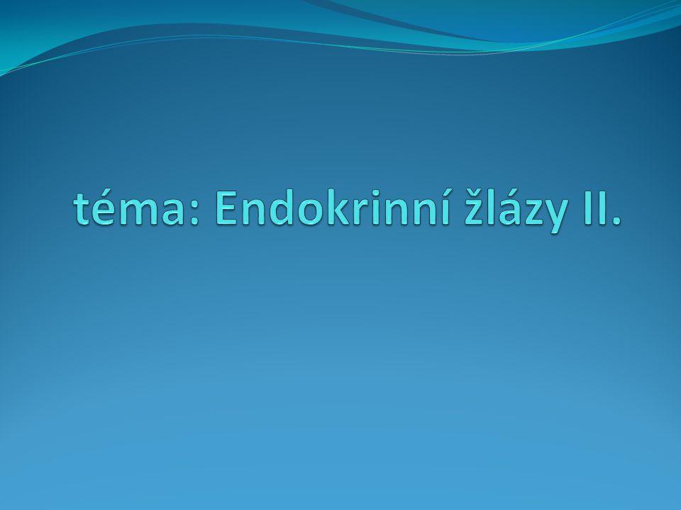 téma: Endokrinní žlázy II.