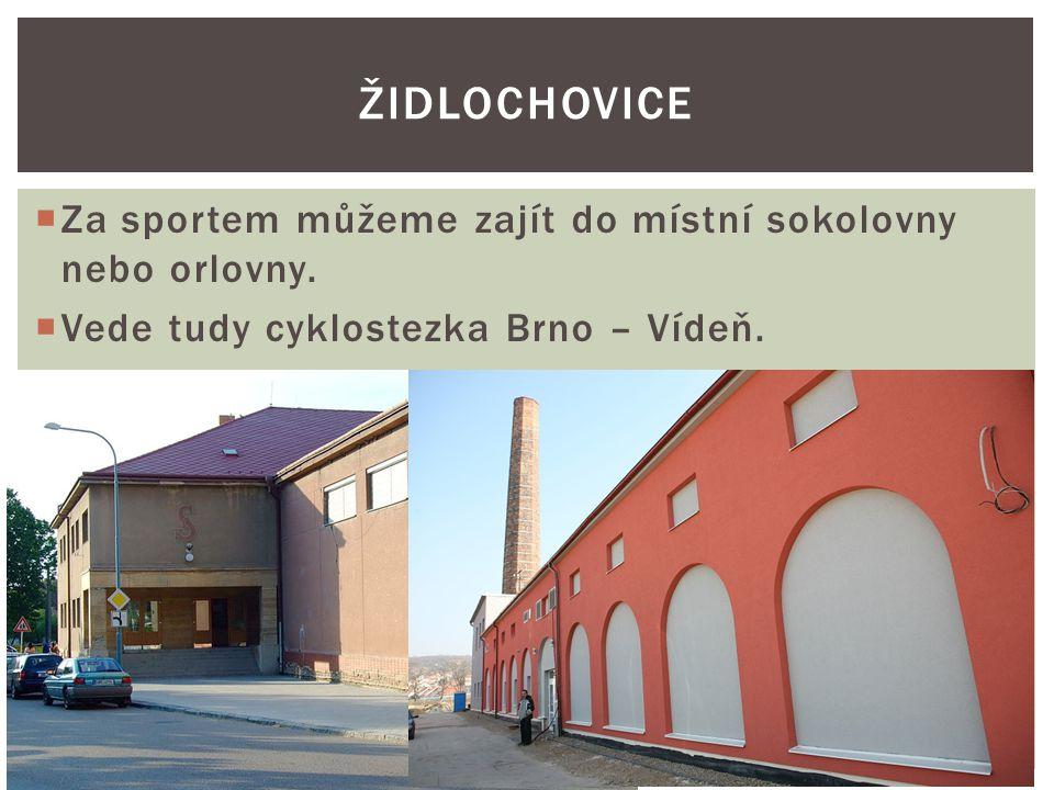 Židlochovice Za sportem můžeme zajít do místní sokolovny nebo orlovny.