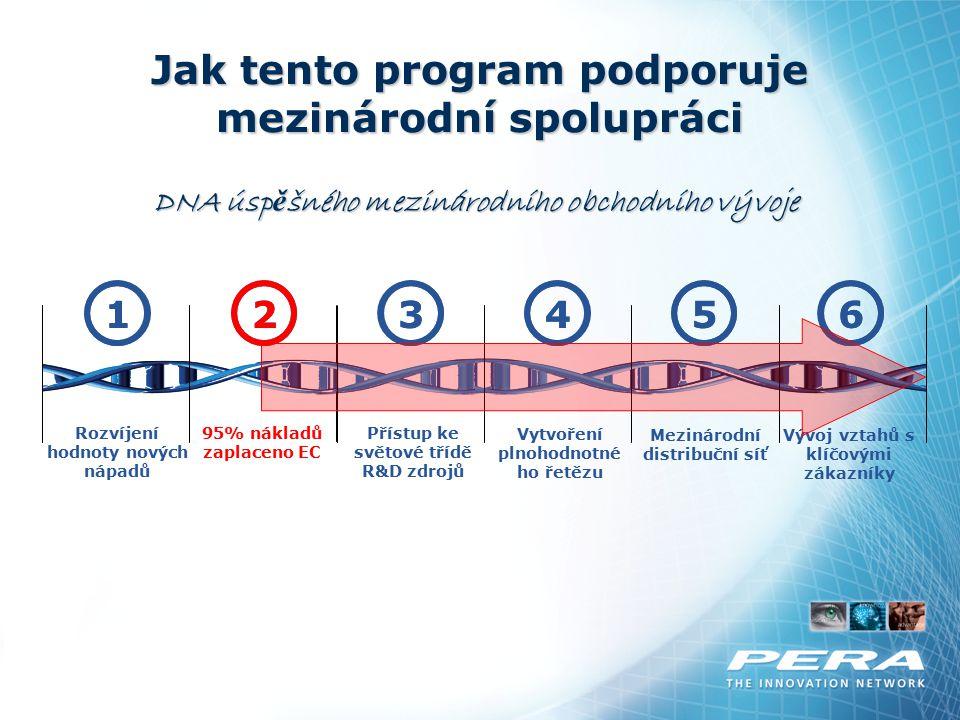 Jak tento program podporuje mezinárodní spolupráci