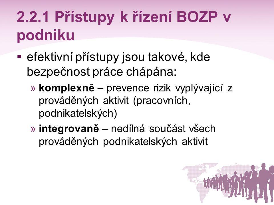 2.2.1 Přístupy k řízení BOZP v podniku
