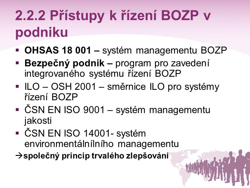 2.2.2 Přístupy k řízení BOZP v podniku