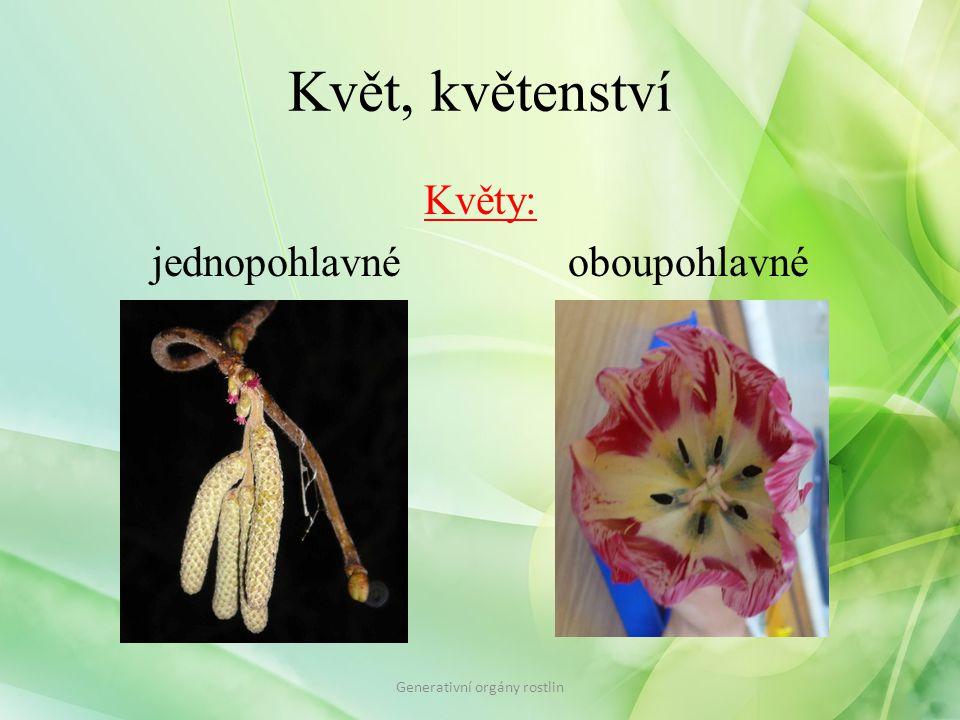 Květ, květenství Květy: jednopohlavné oboupohlavné