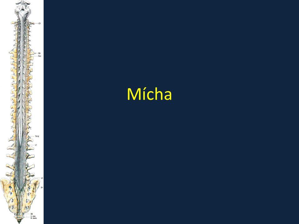 Mícha