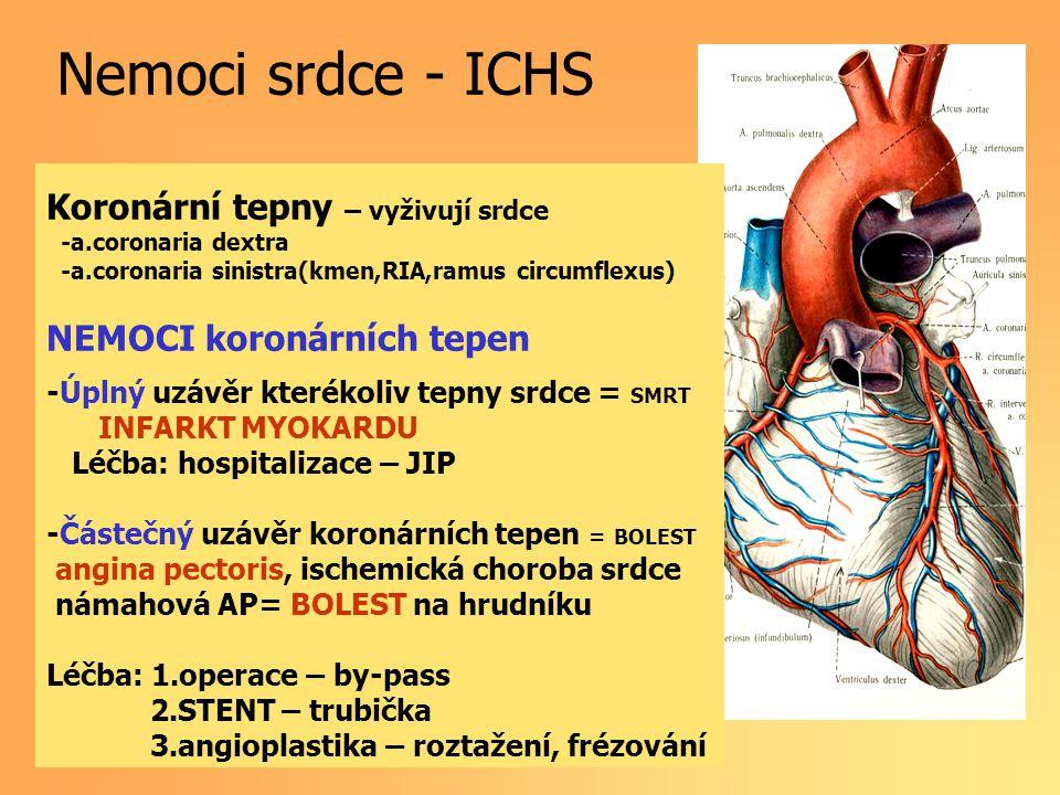 Nemoci srdce - ICHS Koronární tepny – vyživují srdce