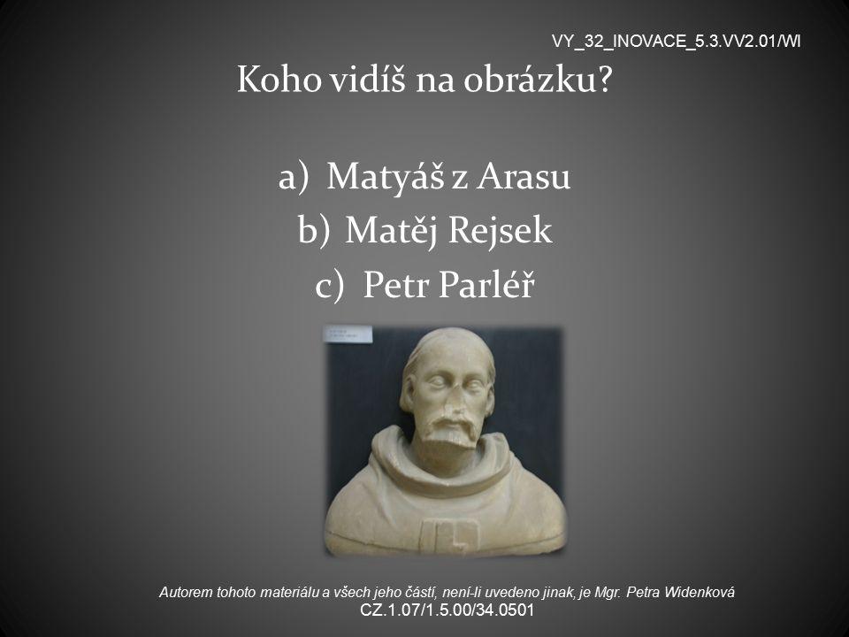 Koho vidíš na obrázku Matyáš z Arasu Matěj Rejsek Petr Parléř