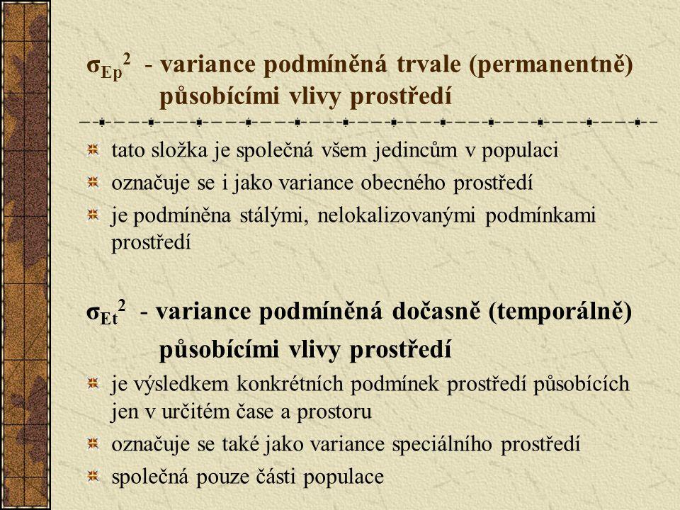 σEt2 - variance podmíněná dočasně (temporálně)