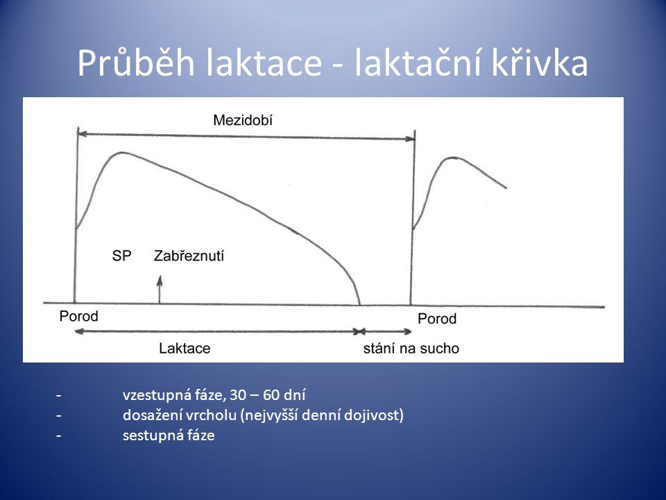 Průběh laktace - laktační křivka