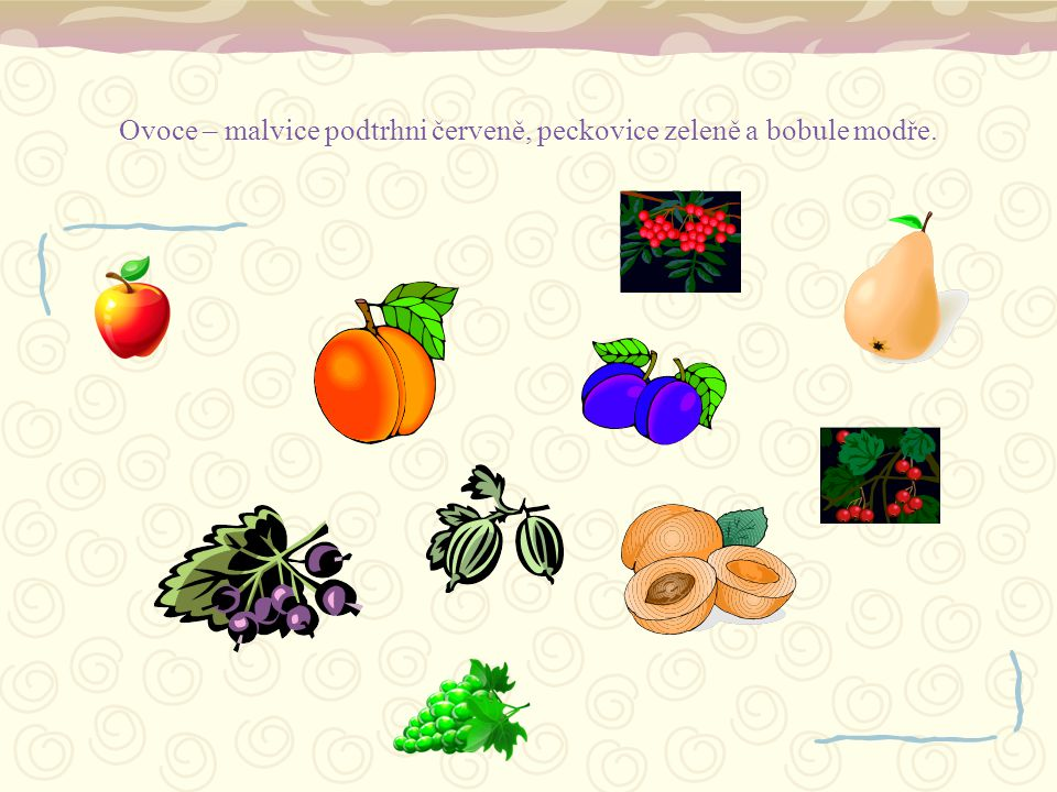 Ovoce – malvice podtrhni červeně, peckovice zeleně a bobule modře.
