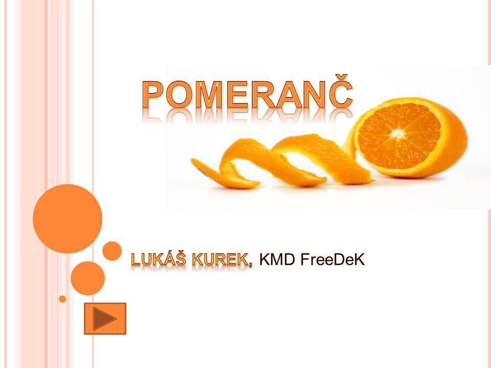 Lukáš Kurek, KMD FreeDeK