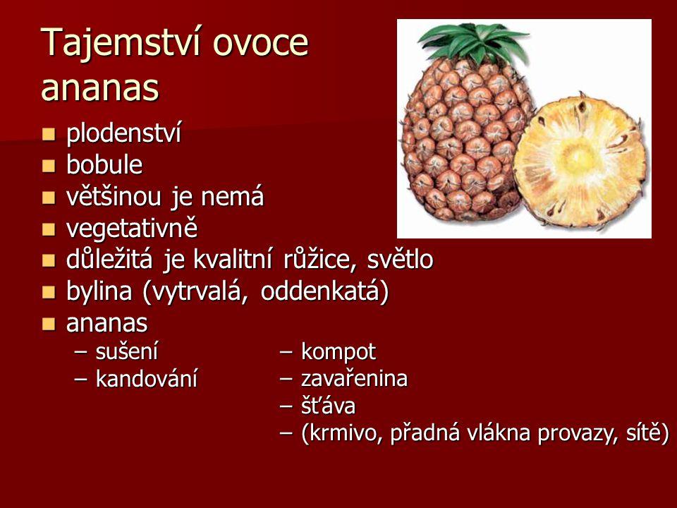 Tajemství ovoce ananas